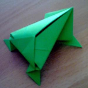 Frosch - Bild 1